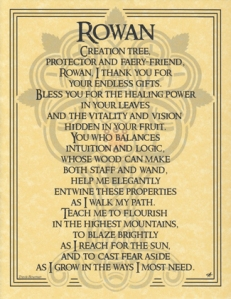 EPROW = Rowan-Tree-Poster