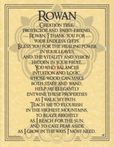 EPROW = Rowan-Tree-Poster